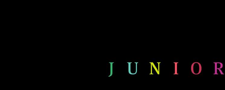 Escape Manor Junior logo